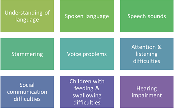 Understanding of language, Spoken language, Speech sounds, Stammering, Voice problems, Attention and listening difficulties, Social communication difficulties, Feeding and swallowing difficulties, Hearing impairment
