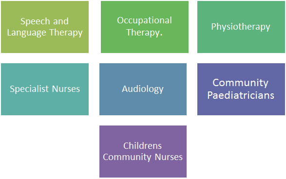 Speech and Language Therapy, Occupational Therapy, Physiotherapy, Specialist Nurses, Audiology, Community Paediatricians and Childrens Community Nurses